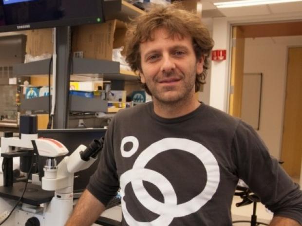 Vittorio Sebastiano PhD, in his Stanford Lab